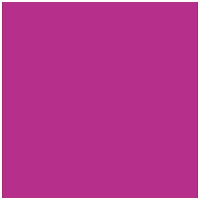 Professionals, botigues i empreses: Haig presència a Internet?